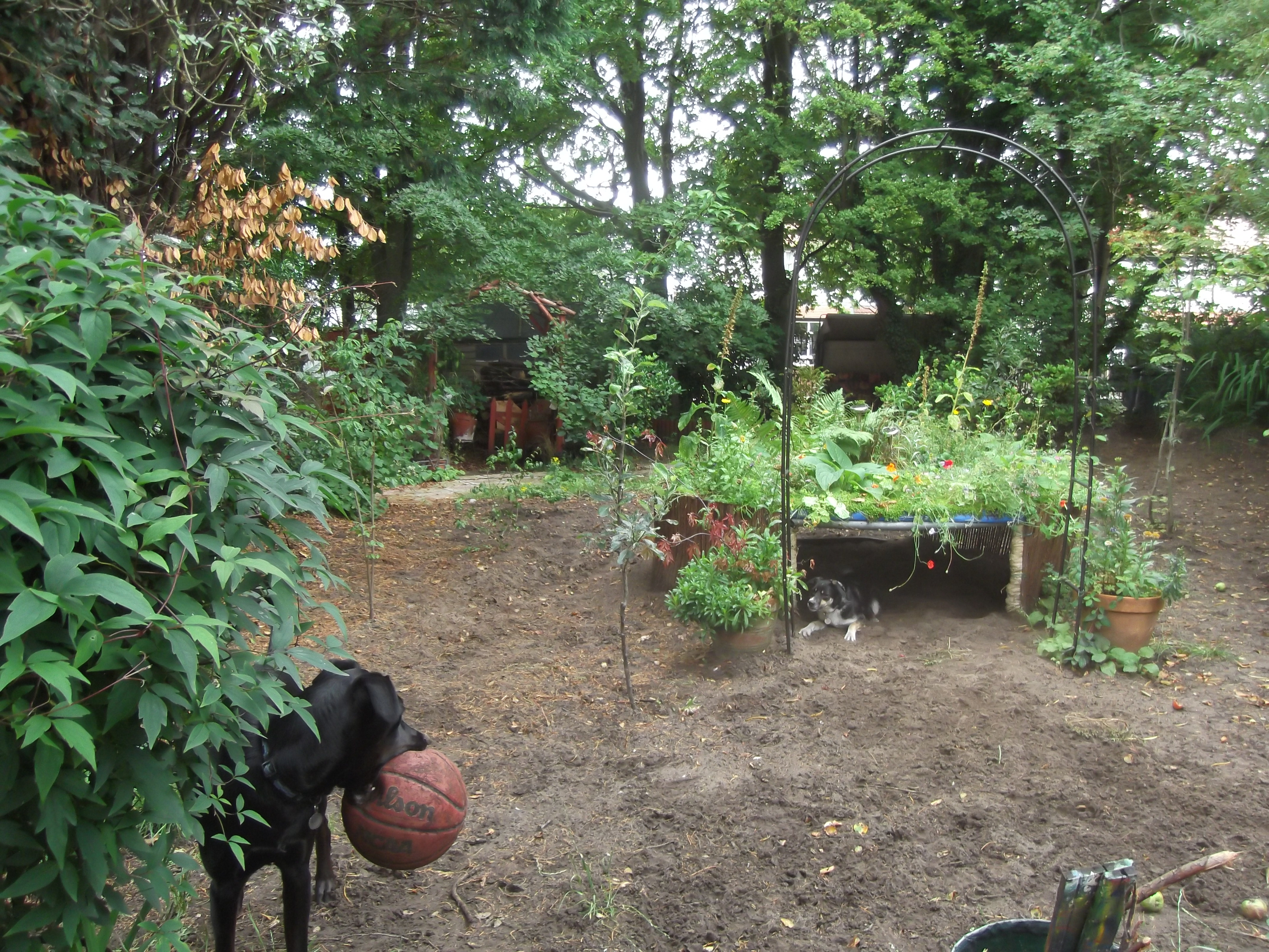Landscaping Muddy Yard : Garden ideas uk on a budget we provide articles